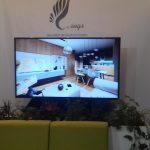 Ecran LED Targul National Imobiliar - TNI 2018 (2)